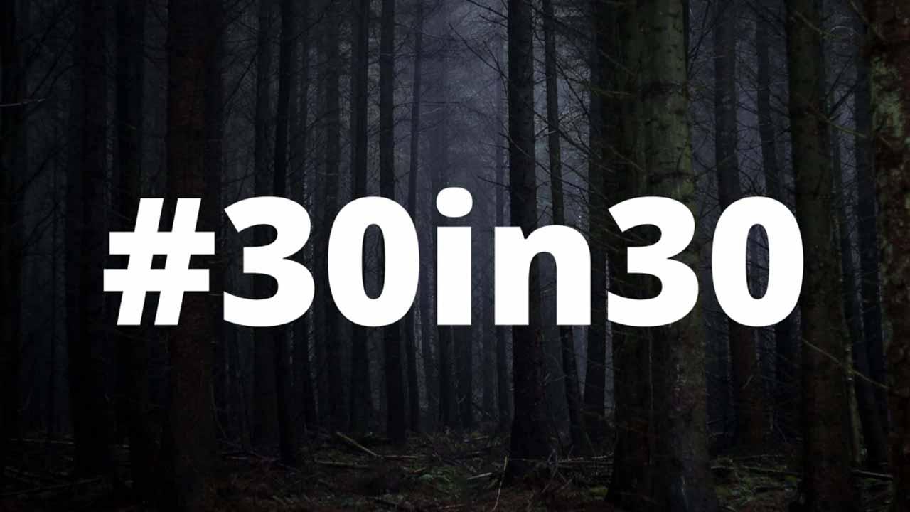 #30in30